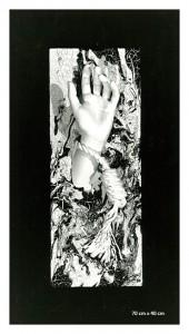 Freedom - 1992 - R